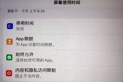 ipad找不到app store